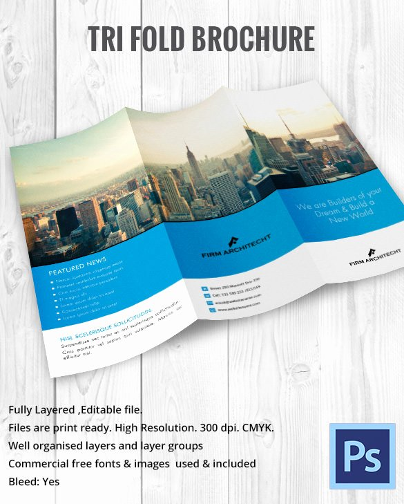 11x17 Tri Fold Brochure Template Luxury 10 Printable Trifold Templates Doc Psd Pdf Eps