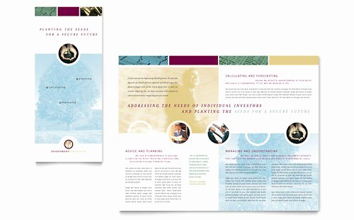 11x17 Tri Fold Brochure Template Luxury Financial Consulting Brochure Template Word & Publisher