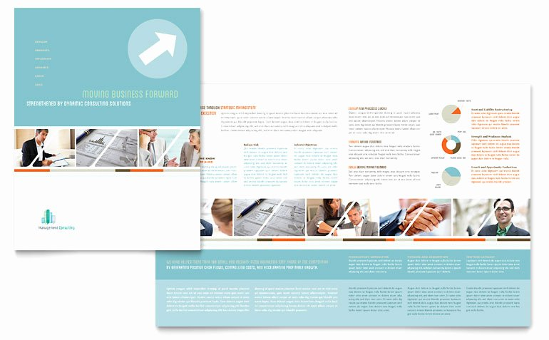 11x17 Trifold Brochure Template Lovely Management Consulting Brochure Template Word & Publisher