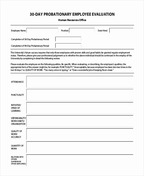 30 Day Employee Review Template Inspirational Sample Employee Evaluation form 11 Free Documents In Pdf