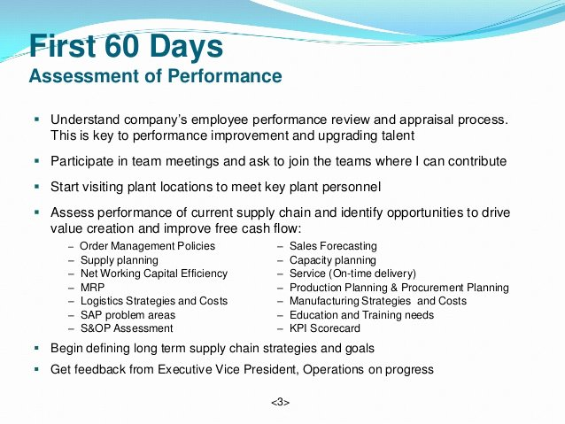 30 Day Employee Review Template Inspirational Vice President Supply Chain 90 Day Plan