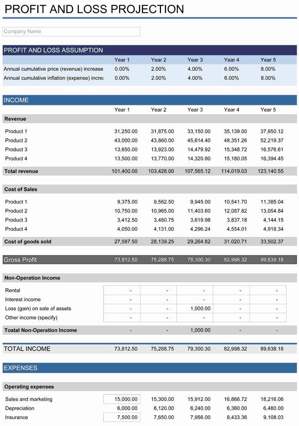 5 Year Budget Plan Template Fresh 5 Year Financial Plan