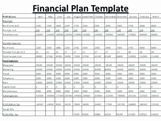 5 Year Budget Plan Template New 5 Year Bud Plan Template Excel How to Use the Five