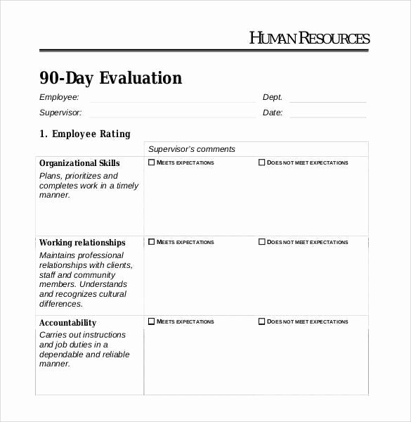 90 Day Employee Review Template Awesome 41 Sample Employee Evaluation forms to Download