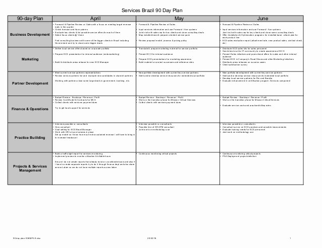 90 Day Performance Review Template Beautiful 90 Day Plan Example Services Business Unit