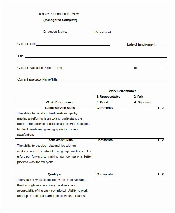 90 Day Performance Review Template Best Of Performance Review Example 9 Free Word Excel Pdf