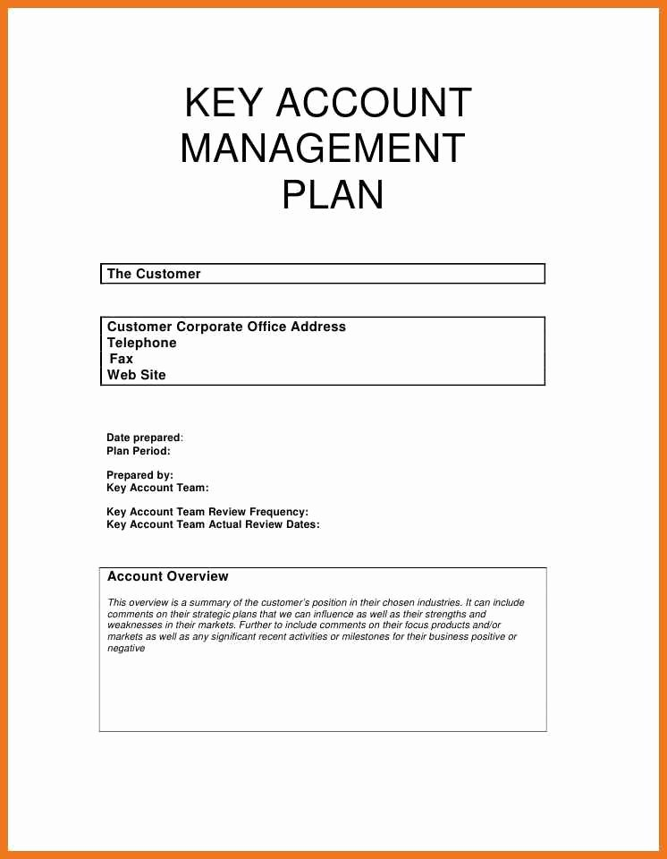 Account Management Plan Template Awesome 5 6 Account Planning Template