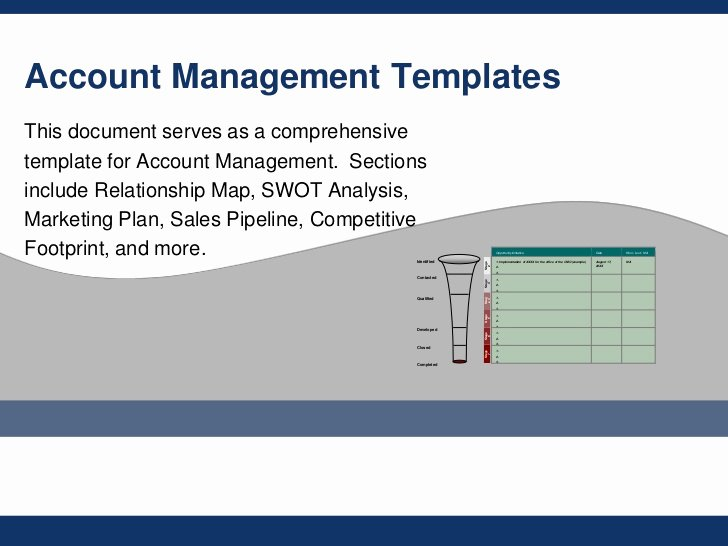 Account Management Plan Template Elegant Flevy Account Management Templates