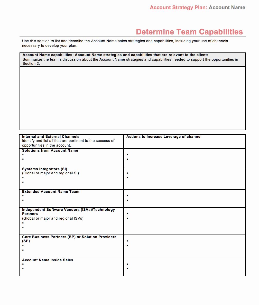 Account Management Plan Template Elegant Strategic Account Plan Template