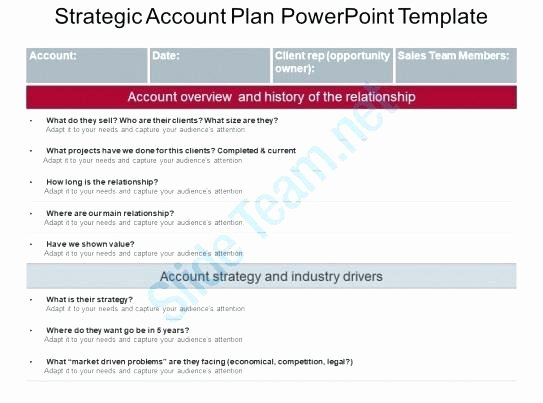 Account Management Plan Template Fresh Account Plan Template Sales Key Excel Planning Strand and