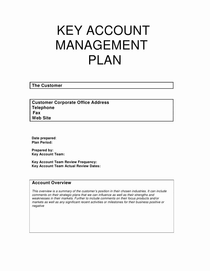 Account Management Plan Template Fresh Key Account Management Plan