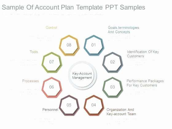 Account Management Plan Template Inspirational Strategic Account Plan Template Word Management – Thaimail