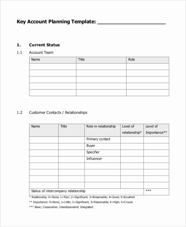 Account Management Plan Template Luxury 7 Strategic Account Plan Templates Free Sample Example