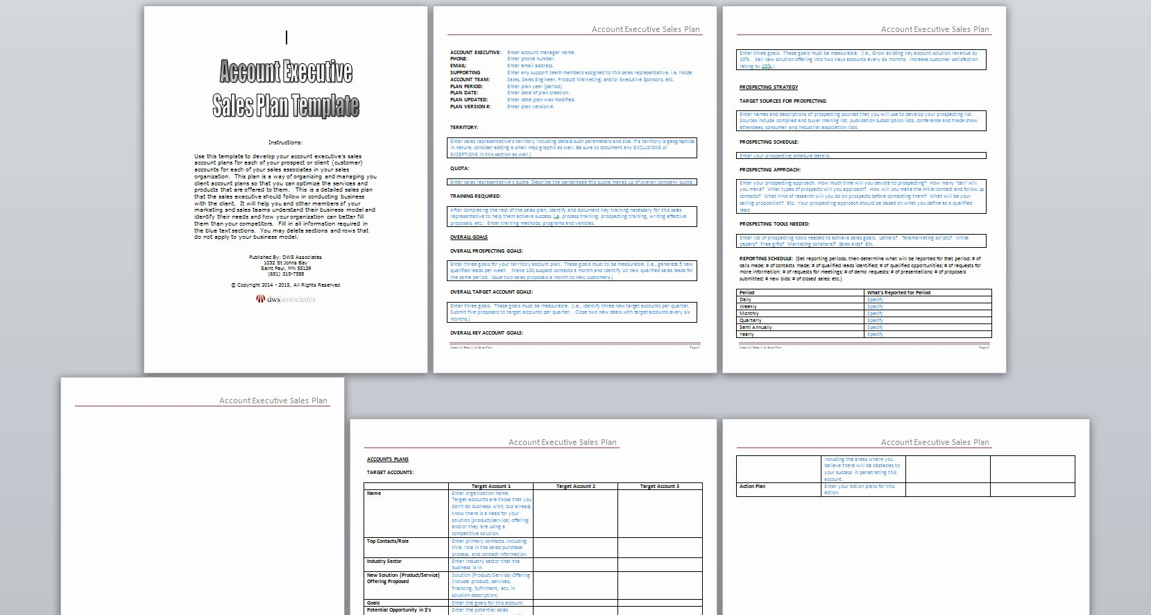 Account Management Plan Template Luxury Sales Plan Template Resume Trakore Document Templates