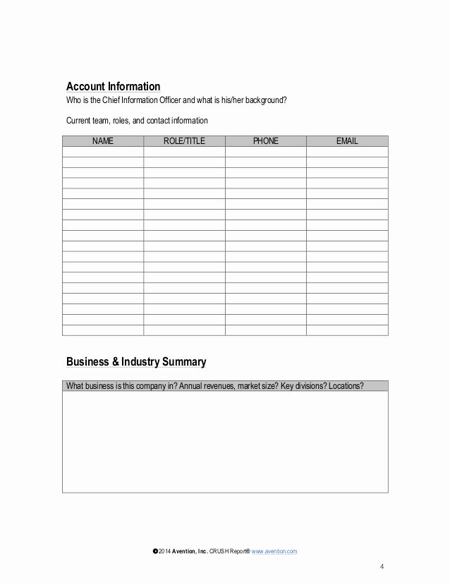 Account Management Plan Template New Strategic Account Plan Template