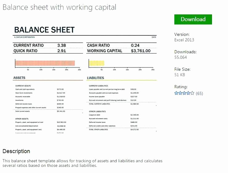 Account Reconciliation Template Excel Fresh Business Balance Sheet Template Excel 2010 Templates for