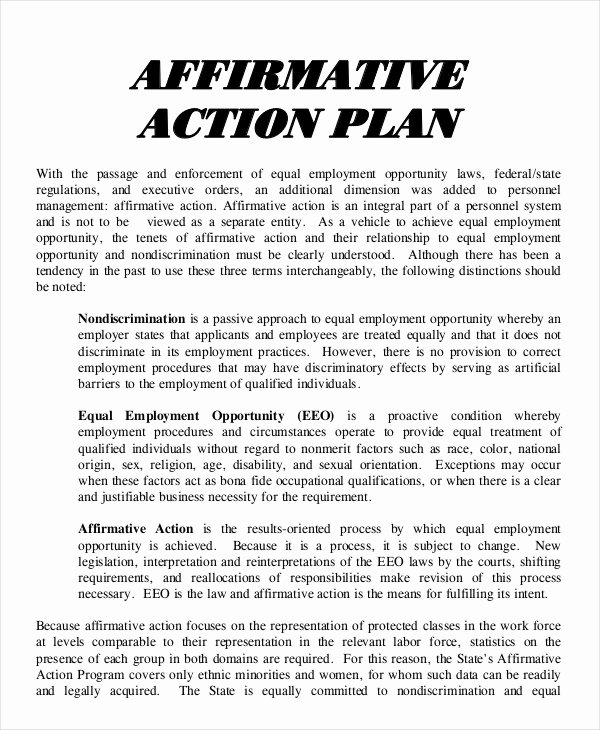Affirmative Action Plan Template Elegant 17 Action Plan Templates