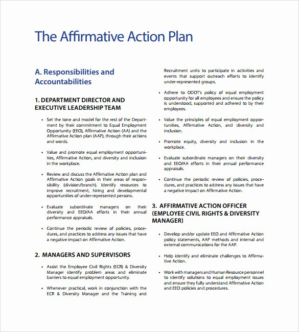 Affirmative Action Plan Template Elegant Affirmative Action Plan Template 9 Download Documents
