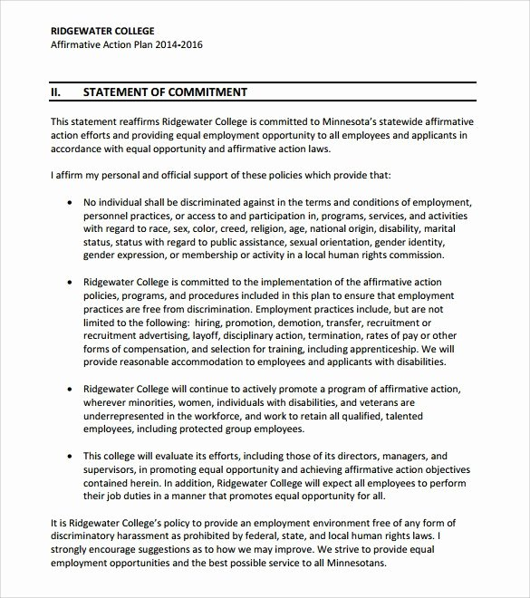 Affirmative Action Plan Template Elegant Affirmative Action Plan Template