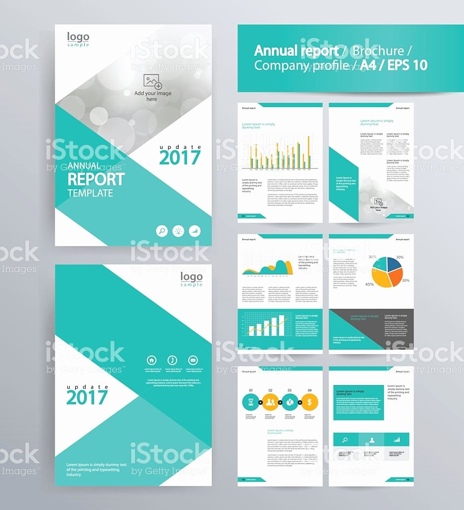 Annual Financial Report Template Beautiful Annual Report Template Filename