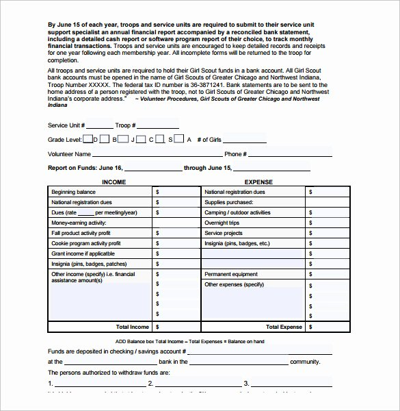 Annual Financial Report Template Best Of 11 Financial Report Templates