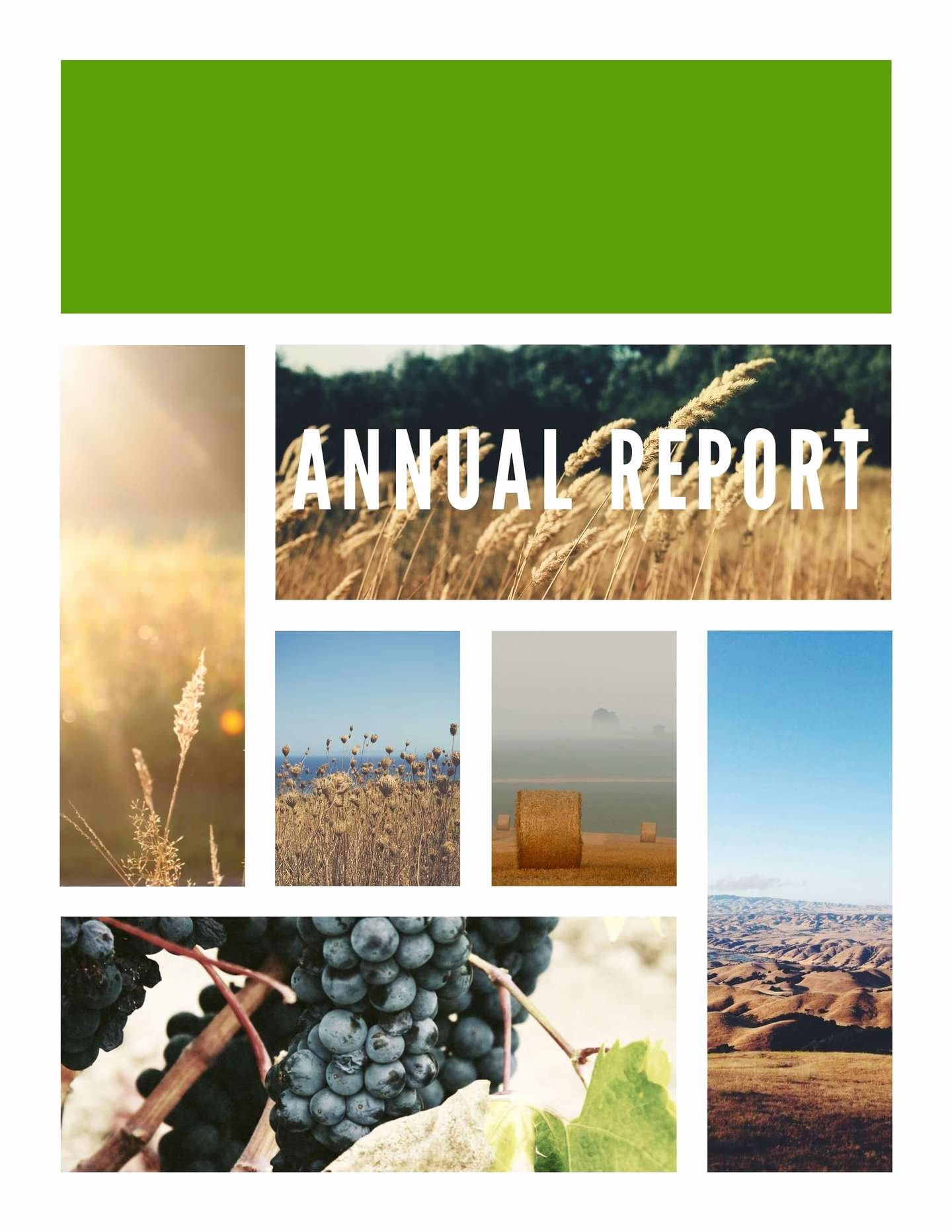 Annual Financial Report Template New 9 Free Report Templates & Examples Lucidpress