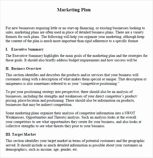 Annual Marketing Plan Template Beautiful Marketing Schedule Template 6 Free Samples Examples