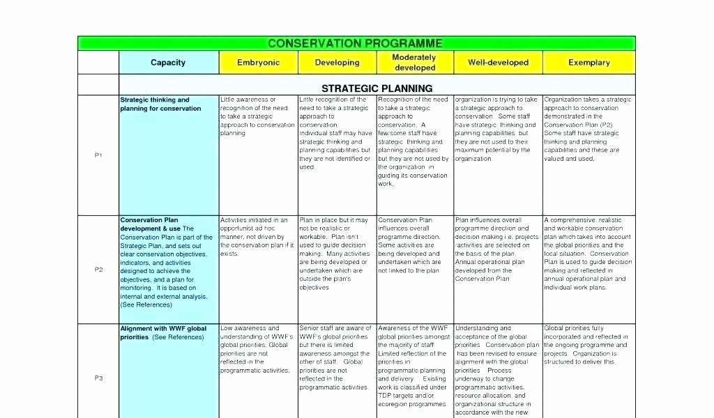 Annual Operating Plan Template Lovely Annual Operating Plan Template