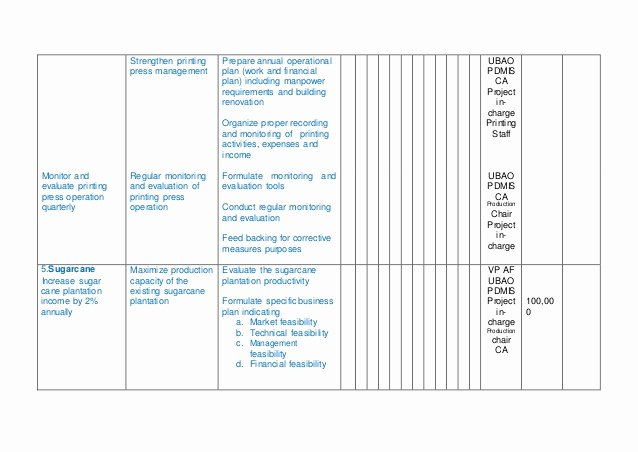 Annual Operating Plan Template New Annual Operational Plan Template