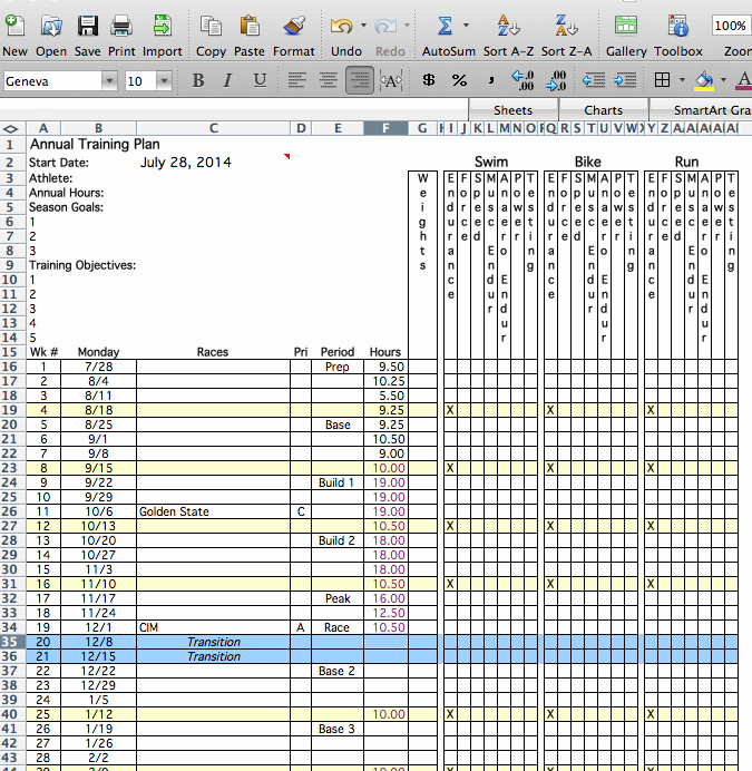 Annual Training Plan Template Awesome 26 Of Annual Training Plan Template