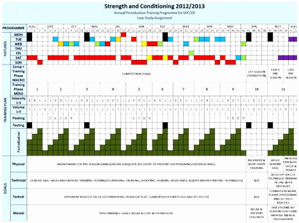 Annual Training Plan Template Lovely 10 Periodisation Plan Template Oaaur