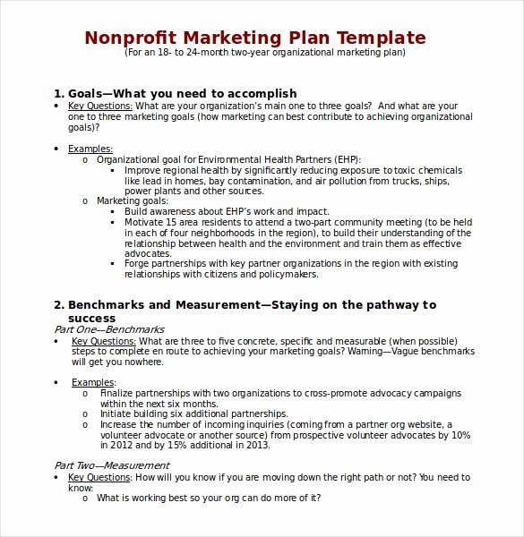 Apartment Marketing Plan Template Beautiful 22 Microsoft Word Marketing Plan Templates