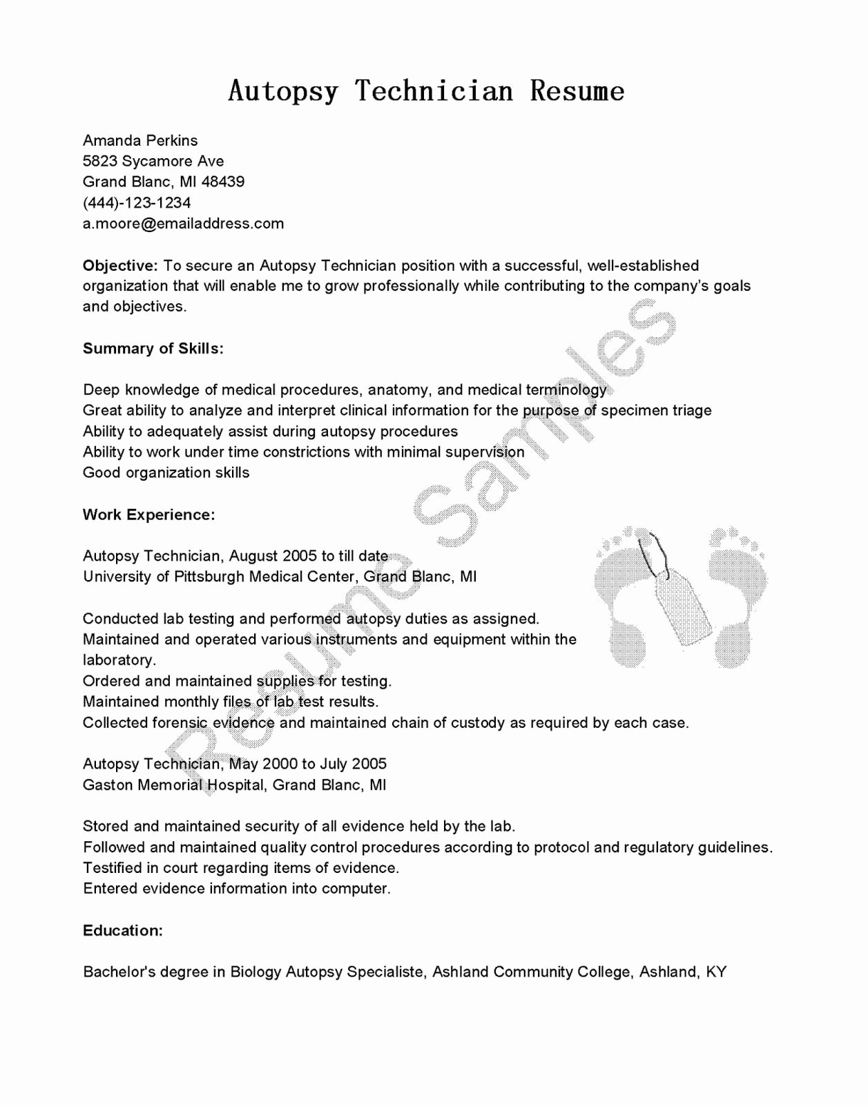 Apple Pages Resume Template Elegant 59 Apple Pages Resume Template