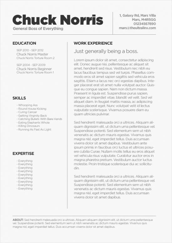 Apple Pages Resume Template Inspirational Free Resume Template for Mac Os X