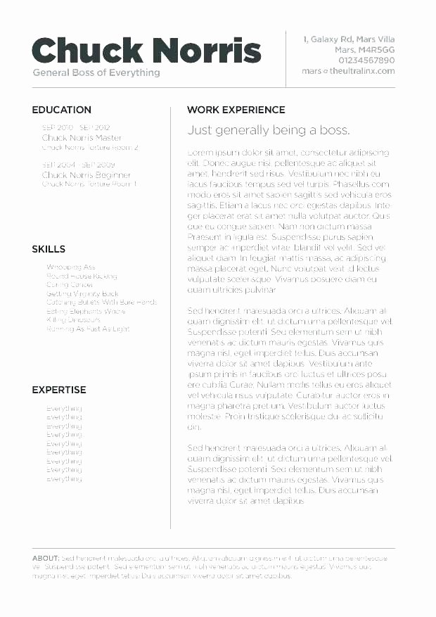Apple Pages Resume Template Luxury Mac Pages Resume Templates