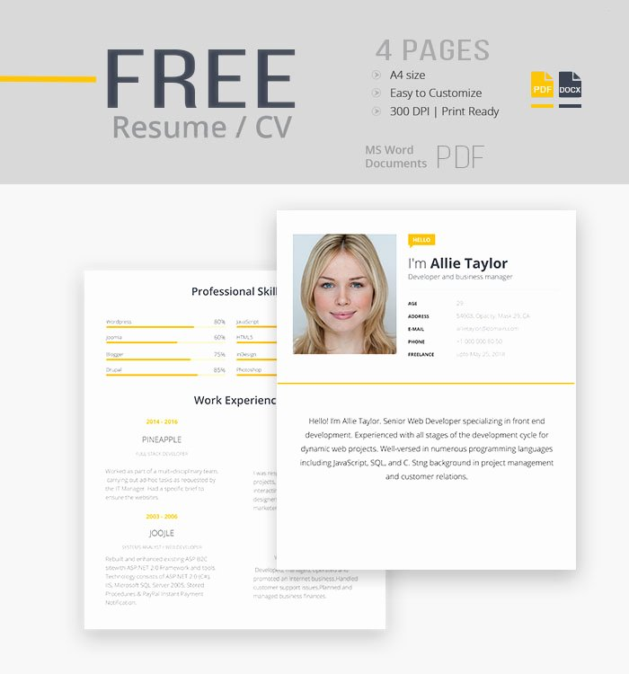 Apple Pages Resume Template Unique Pages Resume Templates 2016 Free