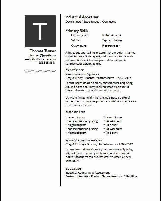 Apple Pages Resume Template Unique Resume