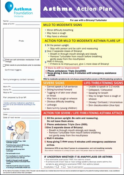 Asthma Action Plan Template Awesome asthma Action Plan Examples National asthma Council