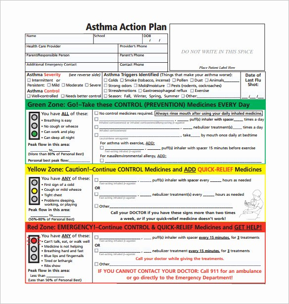 Asthma Action Plan Template Beautiful asthma Action Plan Template – 13 Free Sample Example