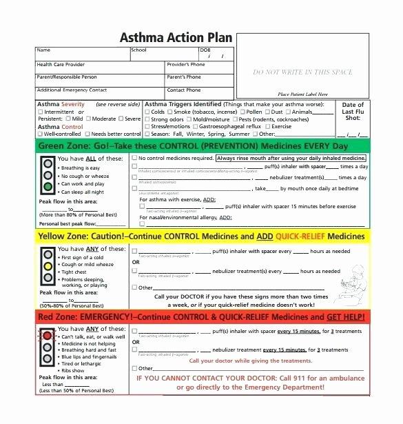 Asthma Action Plan Template Fresh Health Management Plan Template asthma Home Management