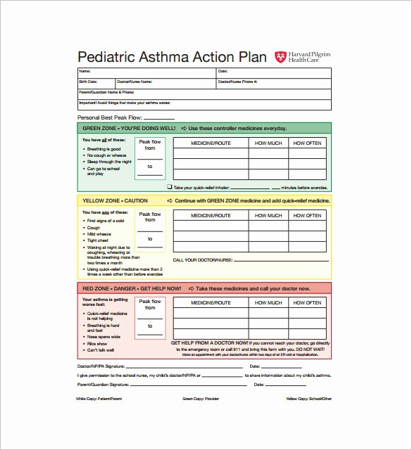 Asthma Action Plan Template Inspirational asthma Action Plan Template – 13 Free Sample Example