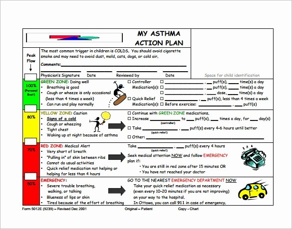 Asthma Action Plan Template Luxury 9 asthma Action Plan Template Doc Excel Pdf