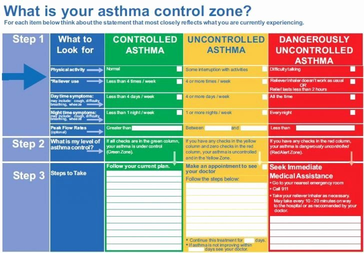 Asthma Action Plan Template Unique asthma Action Plan Template Akbakatadhinco