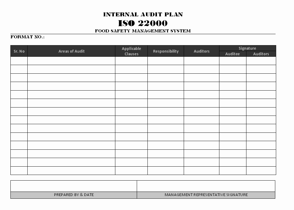 Audit Report Template Excel New Audit Plan Template Excel