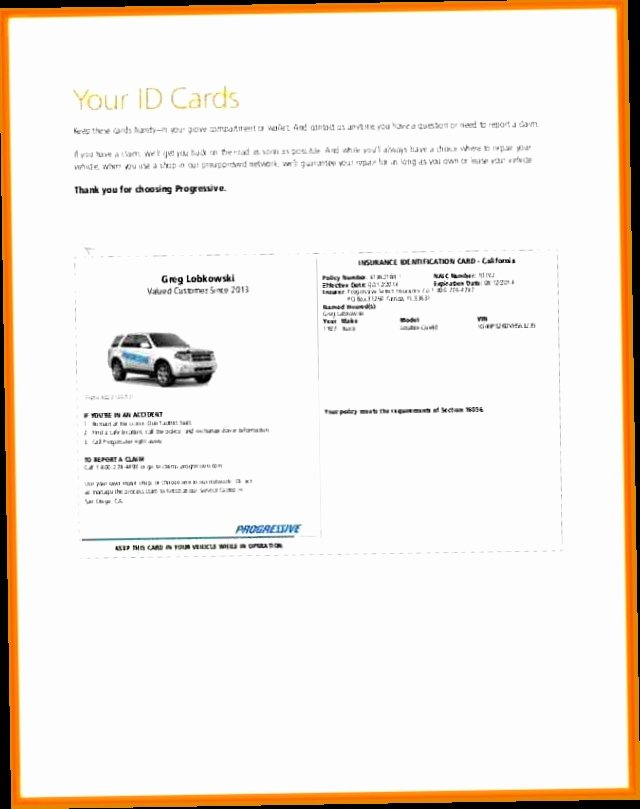 Auto Insurance Card Template Pdf Best Of Auto Insurance Cards Pdf 5 Exciting Parts attending