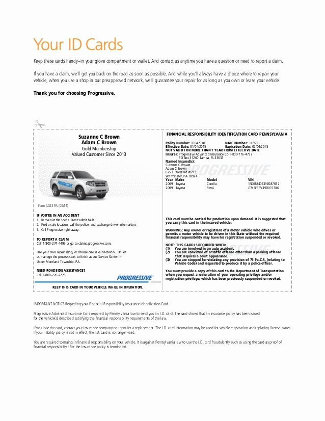 Auto Insurance Card Template Pdf Lovely Pgr Insurance Idcard