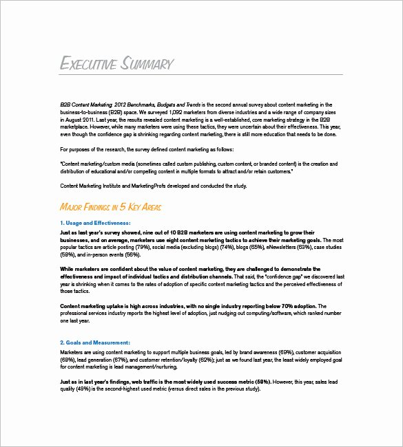 B2b Marketing Plan Template Elegant Marketing Plan Executive Summary Template 16 Free Pdf
