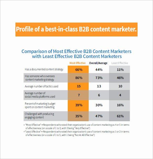 B2b Marketing Plan Template Inspirational 10 B2b Marketing Plan Templates Doc Pdf