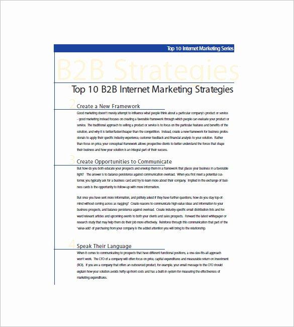 B2b Marketing Plan Template Inspirational 11 B2b Marketing Plan Template Free Sample Example