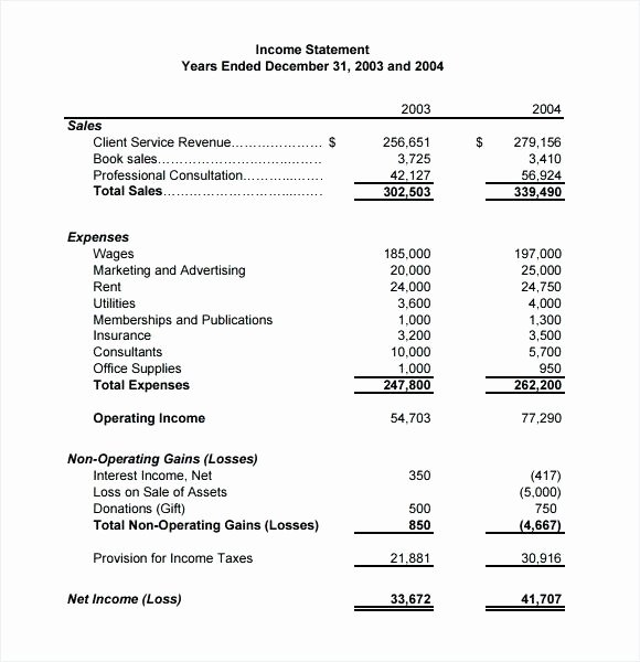 Basic Income Statement Template Inspirational Basic In E Statement Example Template Personal Free Post